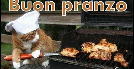 Buon pranzo immagini divertenti foto barzellette video - Immagini buon pranzo ...