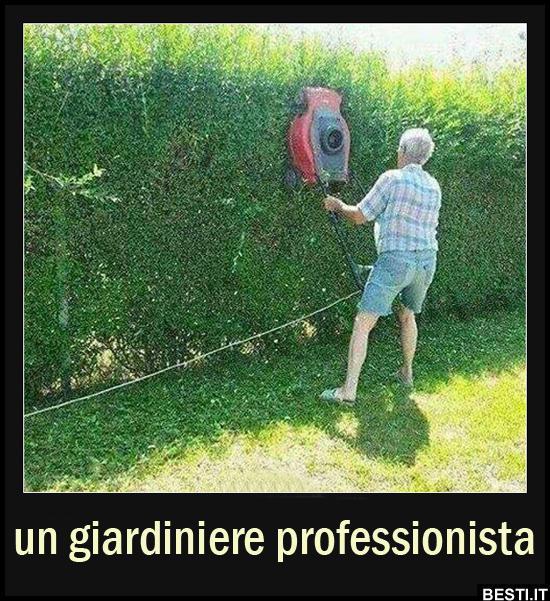 Immagini divertenti foto barzellette video for Donare un giardiniere