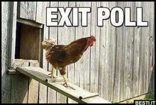 Risultati immagini per exit poll