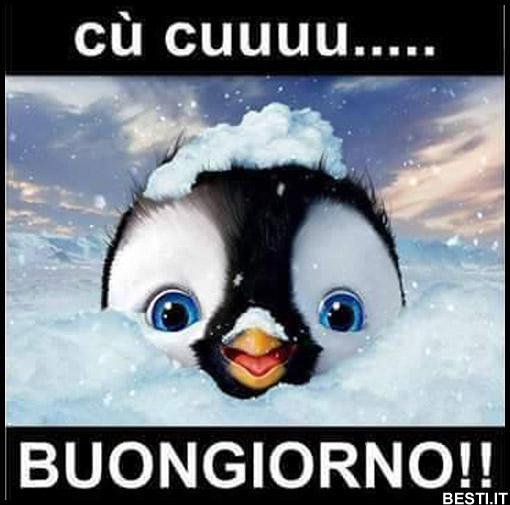 Famoso Buongiorno | BESTI.it - immagini divertenti, foto, barzellette, video HK36