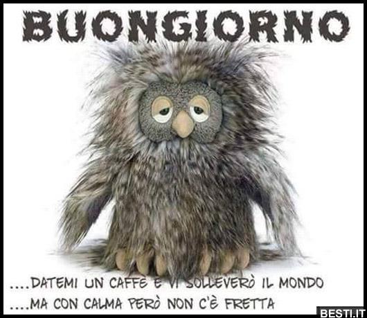 Buongiorno immagini divertenti foto for Foto immagini buongiorno