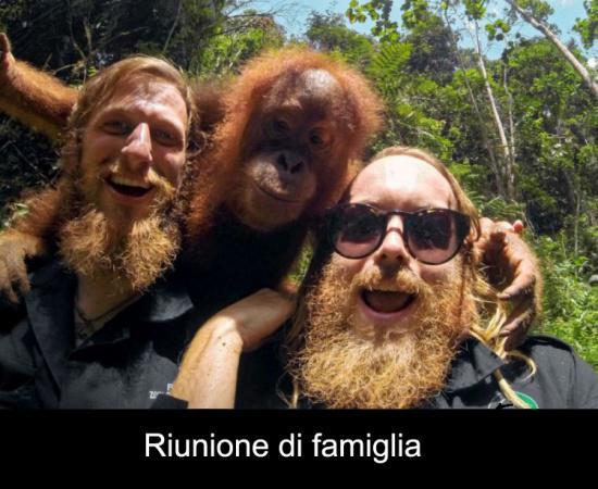 Estremamente Riunione di famiglia | BESTI.it - immagini divertenti, foto  DO06