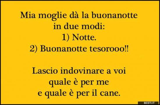 Popolare Mia moglie | BESTI.it - immagini divertenti, foto, barzellette, video QJ82