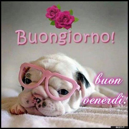 Buon venerdi video jx14 regardsdefemmes for Immagini divertenti buongiorno venerdi