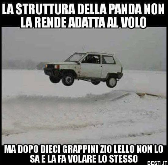 Risultato immagini per panda cingolata