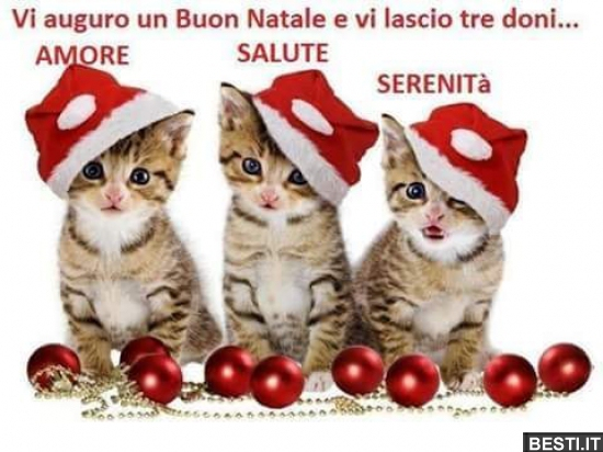 Auguro Un Buon Natale.Vi Auguro Un Buon Natale Besti It Immagini Divertenti Foto Barzellette Video