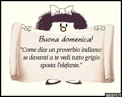 Favoloso Buona domenica | BESTI.it - immagini divertenti, foto, barzellette  CG38