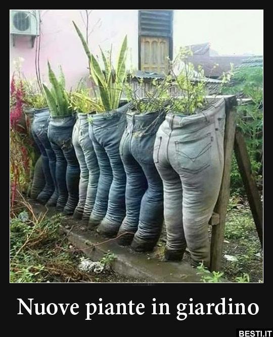 Lustige Fotos Gartenarbeit