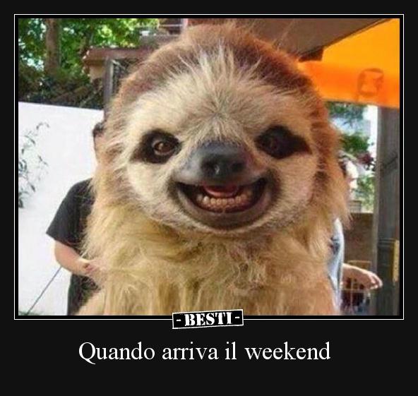 Immagini divertenti foto barzellette video for Buon weekend immagini simpatiche